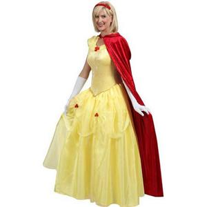 Belle Fairytale Costume N6765