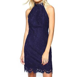 Sexy Lace Sleeveless Bodycon Dress N12689