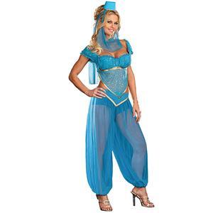 Sexy Indian Costume, Sexy Indian Costumes Women, Genie Rhoda Carpet Costume, #G2614