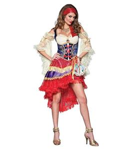 Good Fortune Teller Elite Gypsy Costume N10795