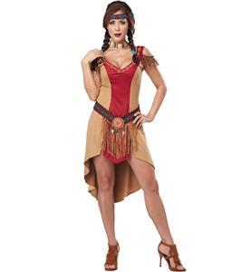Native Beauty Indian Costume N9964