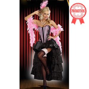 Naughty In Paris Costume, Pink Burlesque Costume, Adult Can Can Costume, Satin Burlesque Costume, #N6769