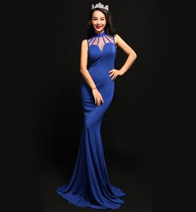 Plus Size Dresses, Fashion Royalblue Long Gown, Formal Evening Dresses, Party Dresses for Women, Pageant Dress, #N11180
