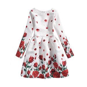 Rose Print Dress, Long Sleeve Dress, Round Collar Dress, Girls Lovely Dress, Vintage Dresses for Girls, Girls Swing Dress, Back Zipper Dress, A-Line Dress, #N15497