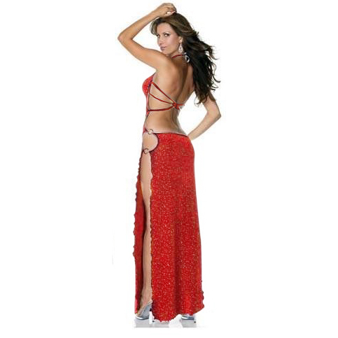 6e76ee6e7f8 Red Mesh Sexy Long Gown N7369