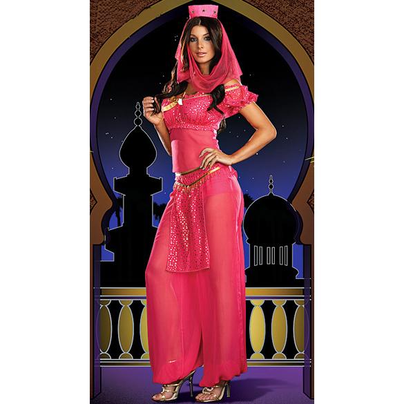 Sexy Genie Costume G1993