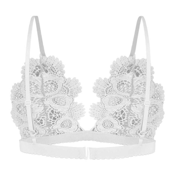 33ee082e8dd638 Sexy Charming White Spaghetti Strap Hollow Out Crochet Lace Lingerie Bra  N16472