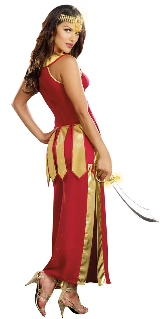 Sexy Warrior Costumes Warrior Princess Costumes
